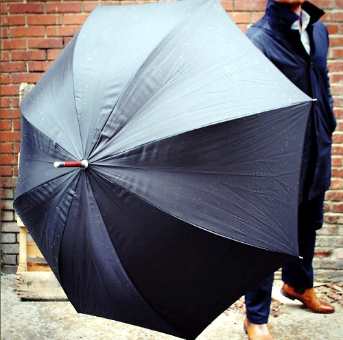 Totes Auto-Open Wooden Handle Umbrella